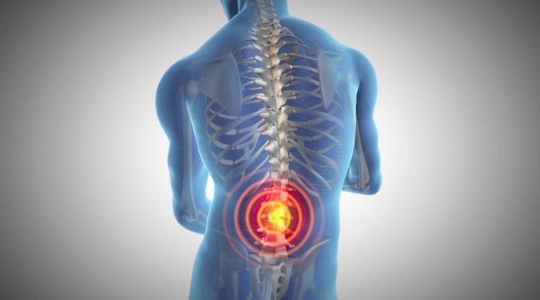 imagen de la parte de atras de un hombre se ven los huesos y circulos en color rojo y amarillo
