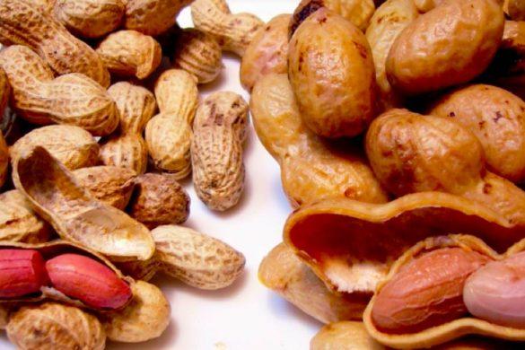 numerosos cacahuates y cascara de cacahuate conoce los beneficios de comer cacahuates