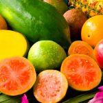 frutas como papaya guayaba naranja pina y mas conoce que son los antioxidantes