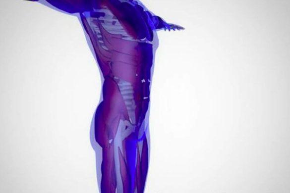 imagen del cuerpo humano tipo radiografia color azul senales de que tu higado esta danado