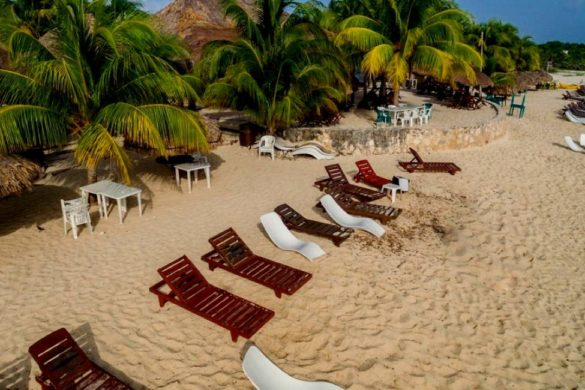 fotografia de una playa con numerosos camastros blancos y cafe palmeras cabanas