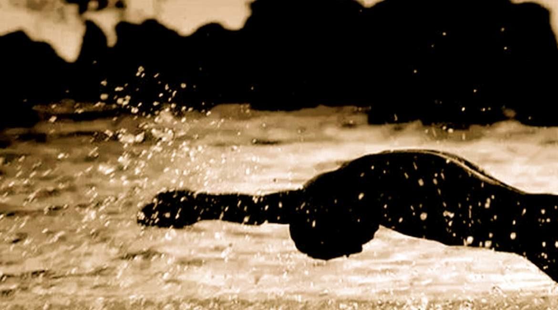 hombre nadando salpicando agua sabes el porque hay pocos nadadores de raza negra