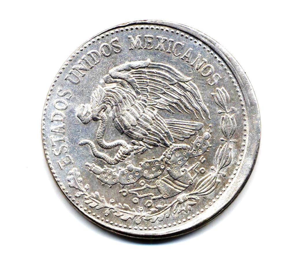 moneda de plata con aguila nopales y serpiente sabes por que meter una moneda al congelador