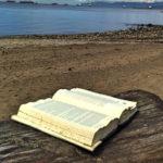 playa piedras arena un trozo de madera con libro abierto y al fondo barcos