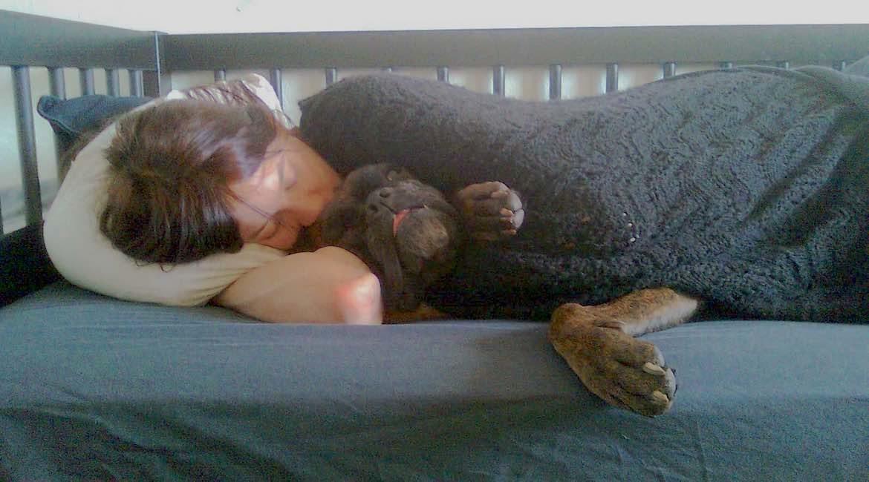 mujer acostada en cama con perro tapados con cobija negra riesgos de dormir con tu mascota