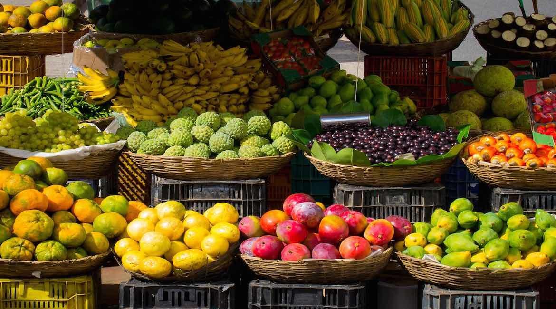 canastas llenas de frutas y verduras de diferentes colores mira como mantenerlas frescas