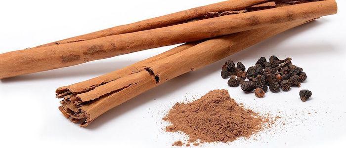 diferentes presentaciones de canela en vara polvo y semilla conoce sus efectos en la salud