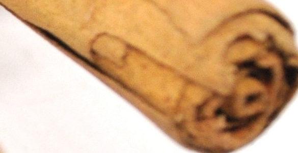 pedazo de una varita de canela color cafe conoce cuales son remedios con canela