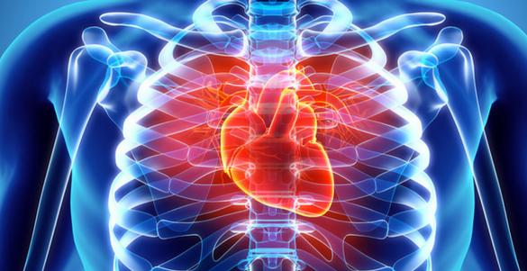 radiografia pecho del cuerpo humano huesos y corazon senales de alarma en nuestro cuerpo