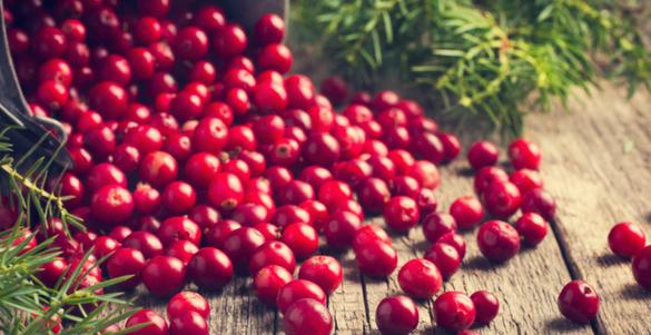 arandanos rojos saliendo de canasta conoce jugo para eliminar infecciones urinarias