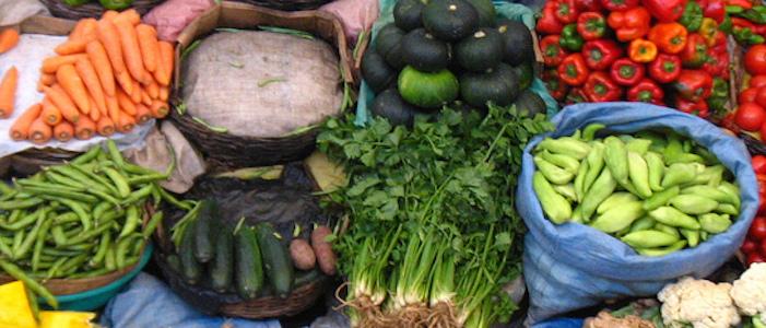 diferentes tipos de verduras de diferentes colores verduras que puedes resembrar en casa