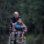 abuela empujando silla de ruedas de su nieto para llevarlo a la escuela historia de shi yuying