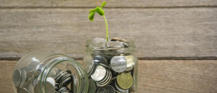 frascos de vidrio con monedas y una plata verde