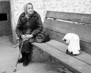 anciana sentada en una banca abrigada con baston y bolsa en compania de un gato blanco